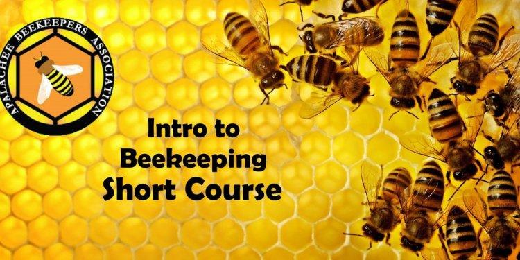 Apalachee Beekeepers