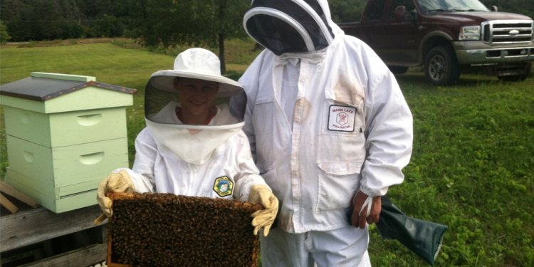 Beekeeping - Back to Nature
