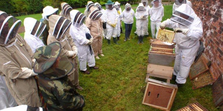 Beekeeping Taster Day