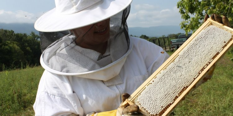 Cherokee Beekeepers