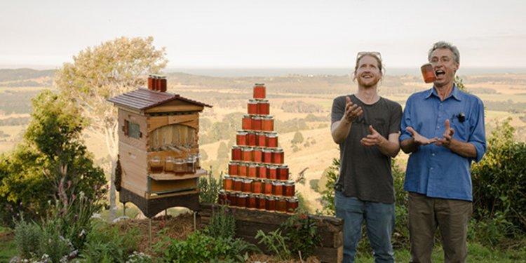 Your Beehive | Indiegogo
