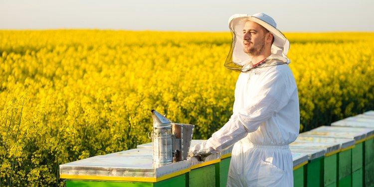 GloryBee | Beekeeping Supplies