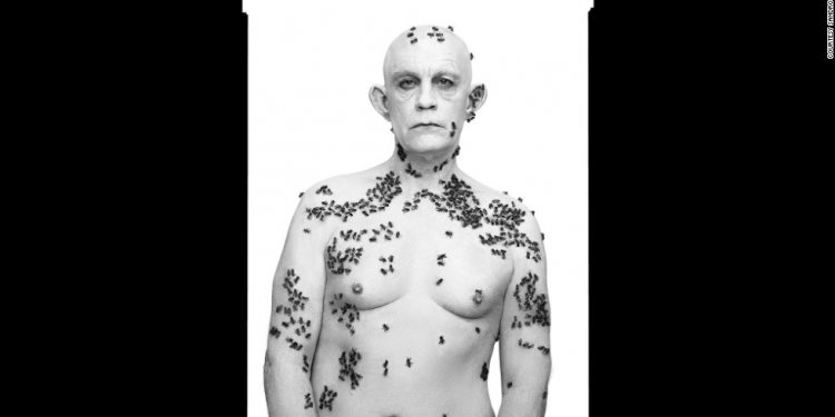Malkovich, covered in bees