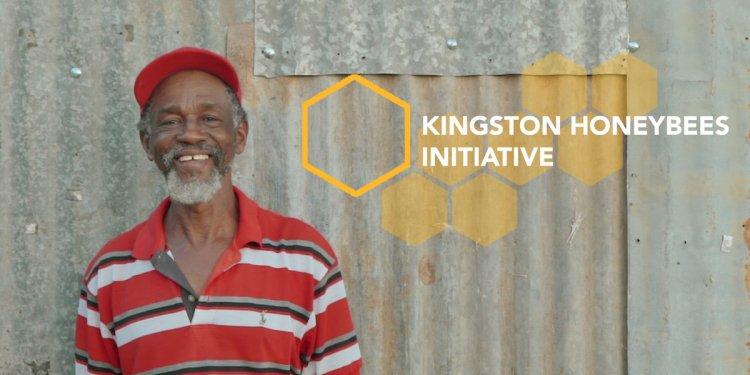 Kingston Honeybees Initiative