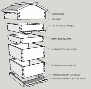 Google Sketchup break down of a modified warre hive, 8 frame hive, top club hive design.