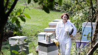 Sharon Mackie has-been beekeeping for three years.