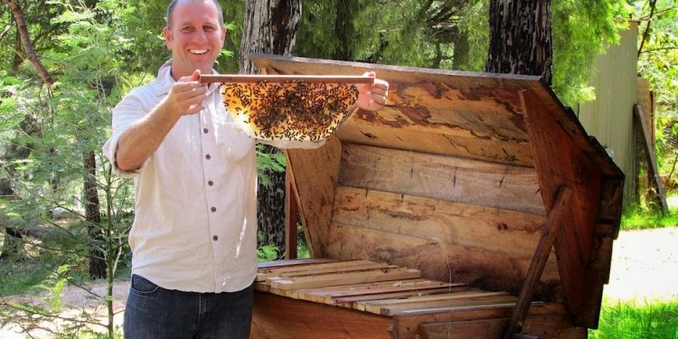Beekeeping Top Bar hive