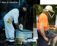 Master beekeeper certification