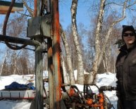 Starting honey bees