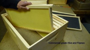 woodenware beehive bee supplies MT Montana hive honey pollinate Idaho Washinton Oregon Alberta British Columbia Wyoming gear pollen Apivar queen clover brood Dakota swarm colony